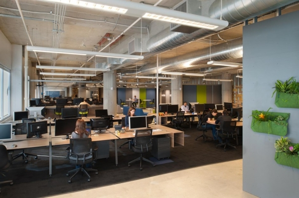 Kiva Office Design by Studio Architecture