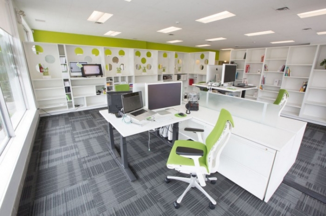 Treefrog web design office office design gallery the for Office design gallery
