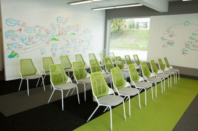 Treefrog Web Design Office