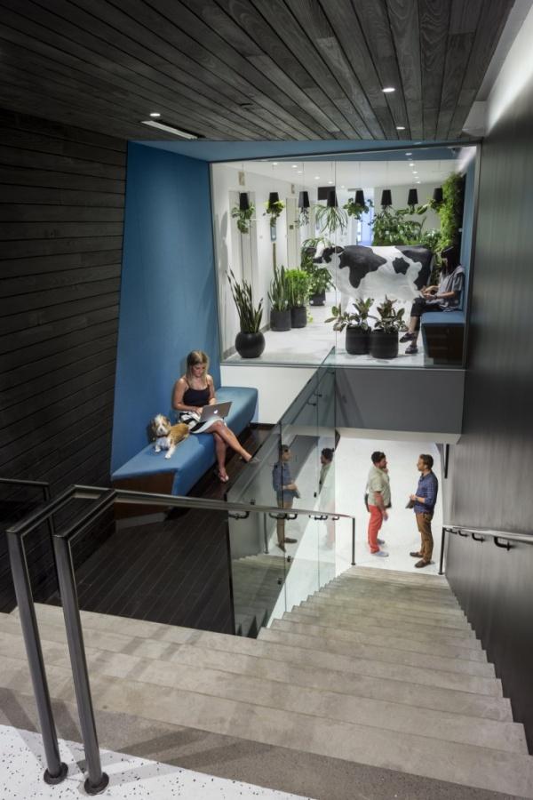 Droga5 new york office office design gallery the best for Office design york